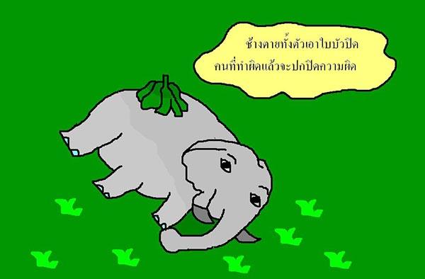 ช้างตายทั้งตัวเอาใบบัวมาปิด
